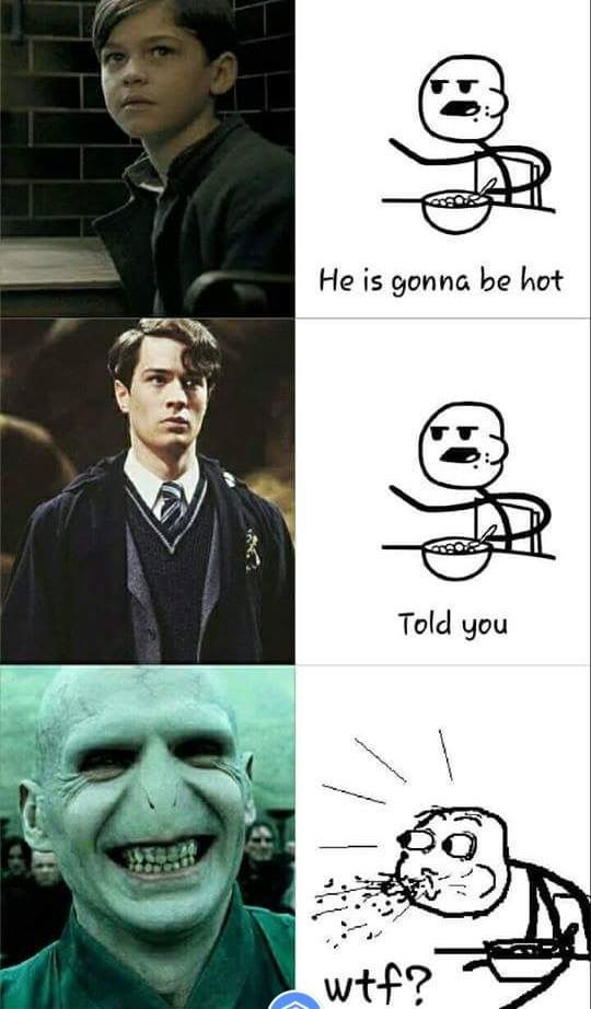 This Is Lord Voldemort The Most Terrible Person Ever In The Harry Potter Series Before And After Harry Potter Memes Hilarious Harry Potter Jokes Funny Harry Potter Jokes