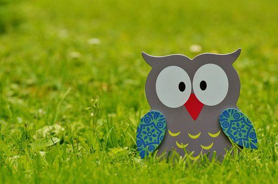 Imagen de https://pixabay.com/static/uploads/photo/2015/06/17/13/28/owl-812447_640.jpg.