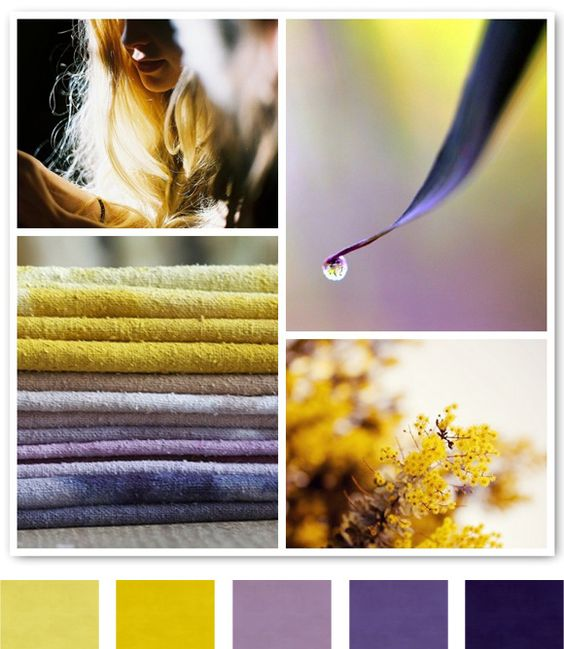 Purple. Yellow.