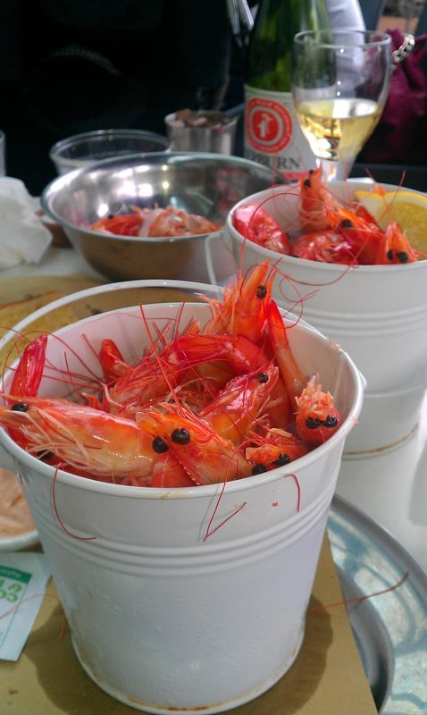 Seafood restaurant buckets and seafood on pinterest for Blue fish restaurant
