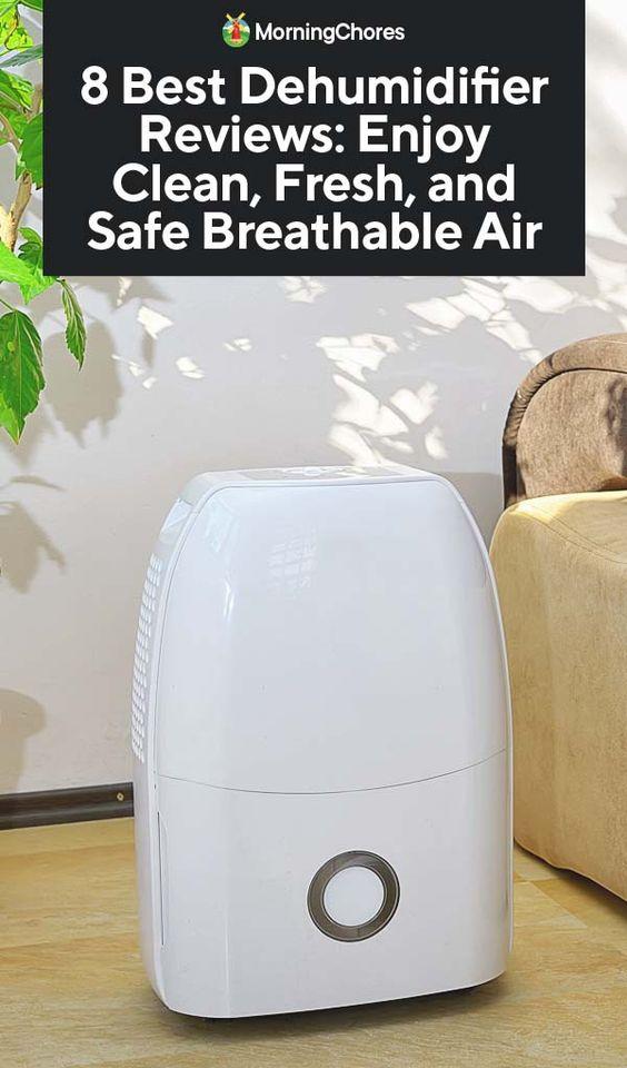 8 Best Dehumidifier Reviews: Enjoy Clean, Fresh, and Safe Breathable Air