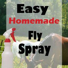 Easy Homemade Fly Spray   Savvy Horsewoman