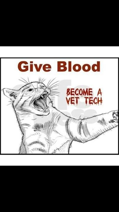 Give blood #vettech #NVTW #WeHeartVetTechs