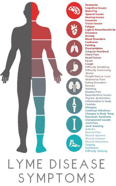 LymeSymptoms | yep, yep, and yep.