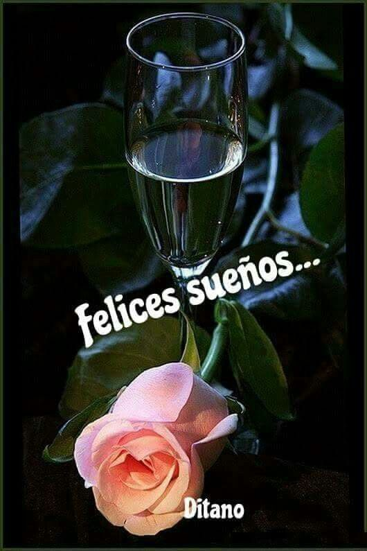 Pin By Leonor Maria Hernandez On Buenas Noches 11 Gold Wallpaper Background Rose Flower Wallpaper Beautiful Flowers