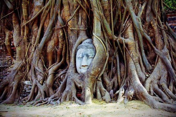 タイ・アユタヤ遺跡のです。