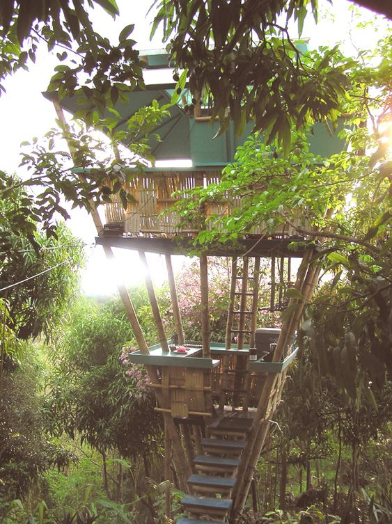 Puerto Rico, tropical treehouse vacation rental