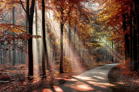 a new day by bob van den berg on 500px