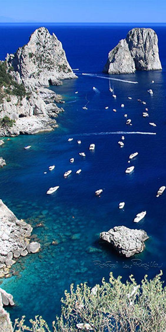 Regilla ⚜ Capri, Italia