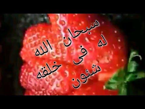 سبحان الله خضروات وفواكه على اشكال الطيور Youtube Neon Signs Youtube Neon