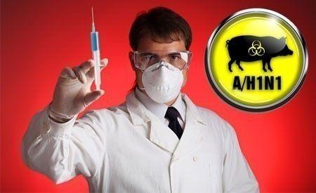 Die Hintergründe der Schweinegrippe