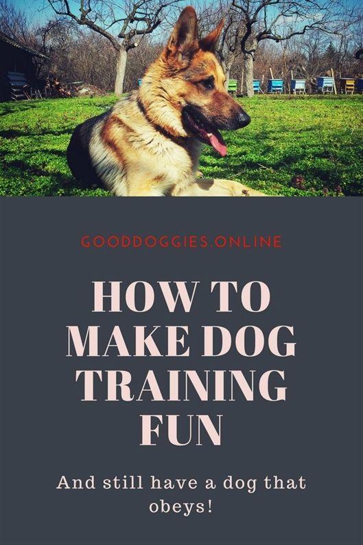 Cardinal Dog Training Huntley Il Dog Training Petsmart Dog