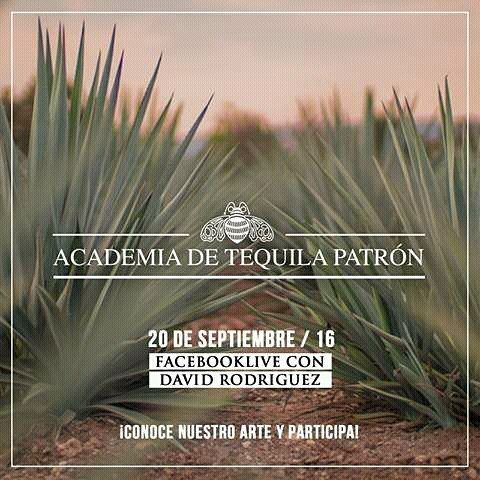 Do you wanna know more about Tequila Patrón and the Art of Patrón Colombia? Tomorrow on Facebook Live. http://ift.tt/2cEqZBD colombia. And don't forget to visit our #website: www.artofpatron.co. Powered by #beautifywebdesign #html5 #css3 #php #bootstrap #ajax #javascript #jquery #patron #patrontequila #tequilapatron #tequila #web #webdeveloper #webdevelopment #webdesign #webdesigner #frontend #code #design #colombia
