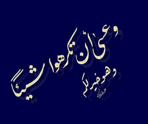 وعسى أن تكرهوا شيئا وهو خير لكم للخطاط وليد الوراقي Calligraphy Arabic Calligraphy
