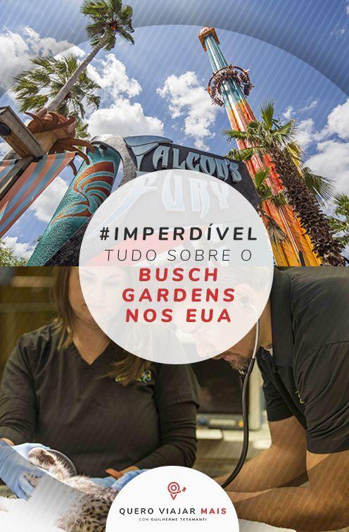 6370c475aeb5eb3e81c05ebf6c0fc841 - Busch Gardens Tampa Horario De Funcionamento