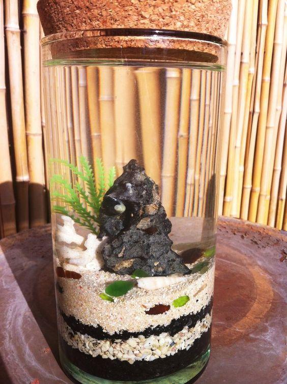 Volcano Shrimp Corked Vase By Opaeulashrimp On Deviantart Sea Monkeys Shrimp Tank Vase