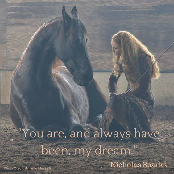 I waited 20 years for my first horse....and he is my dream.