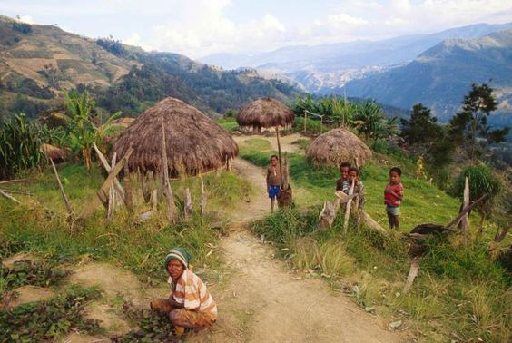 A Lani village on trail between Dimba and Tiom, Papua. Image by Karl Lehmann