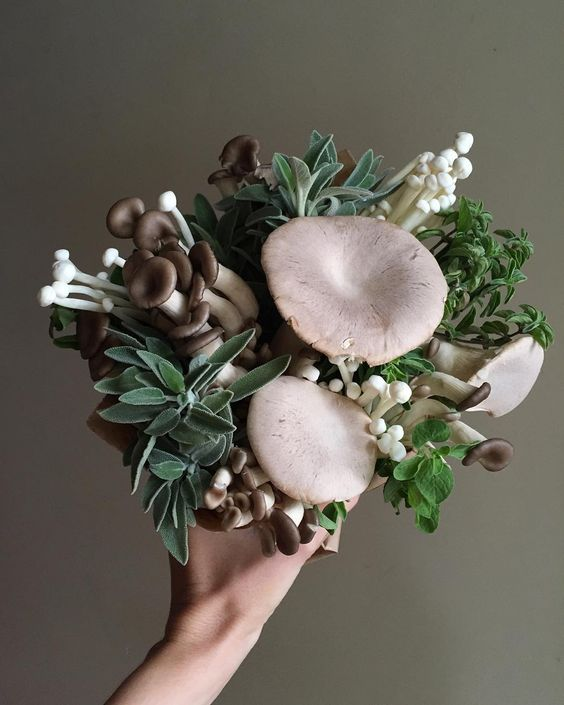 "If you're meeting with a prospective client and your first thought is ""I should make them a mushroom and herb bouquet!"" you should probably seek psychiatric help. by yasminemei:"