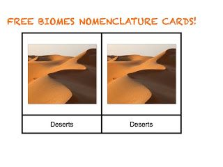 FREE BIOME NOMENCLATURE CARDS, they go along with Classical Conversations Cycle 2 memory work