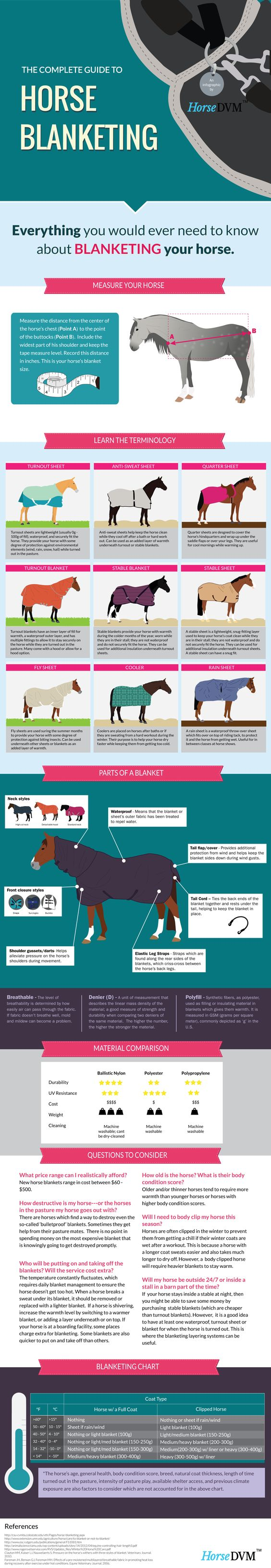 Learn about how to measure your horse for a blanket, whether to blanket them, parts of a blanket, horse blanketing terminology, a suggested blanketing chart, blanketing material comparison, and more!