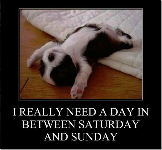 lazy #Saturday!