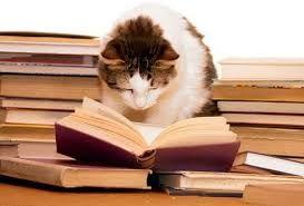 En mi tiempo libre, yo leo los libros.