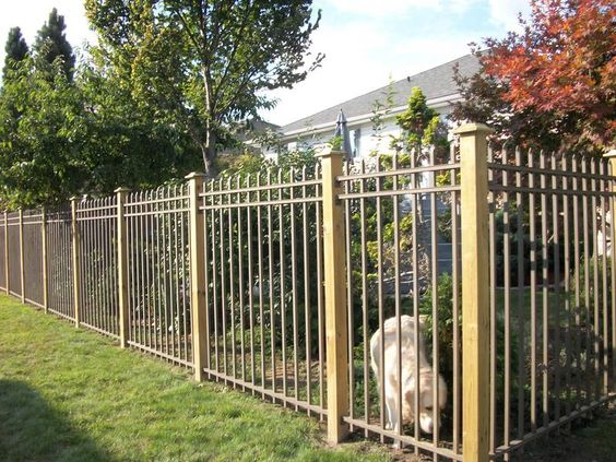 Nice fence, should stand up well to northwest weather.