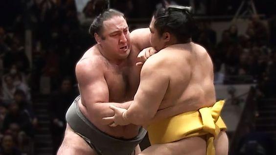 相撲ののこった