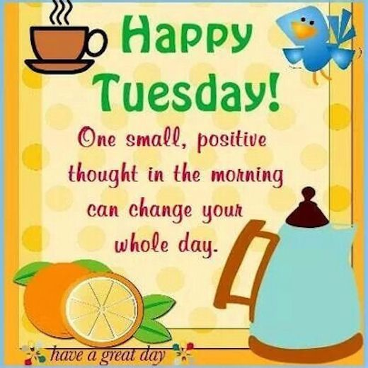 Top 20 Tuesday Memes Positive Personajewelries Happy Tuesday Morning Happy Tuesday Quotes Tuesday Meme