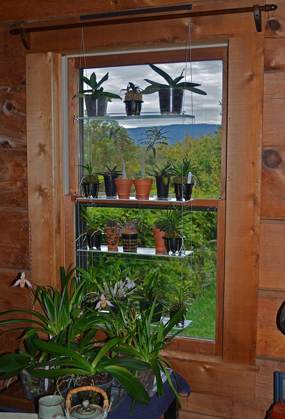 Standard 20 hanging window plant shelves create your - How to hang plants in front of windows ...
