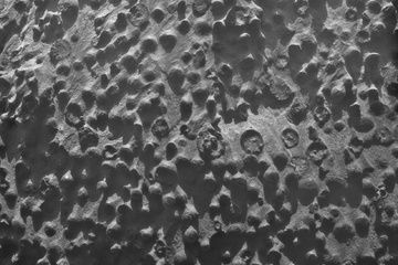 A strange picture of odd, spherical rock formations on Mars from NASA's Opportunity rover has scientists scratching their heads over what exactly they're looking at.