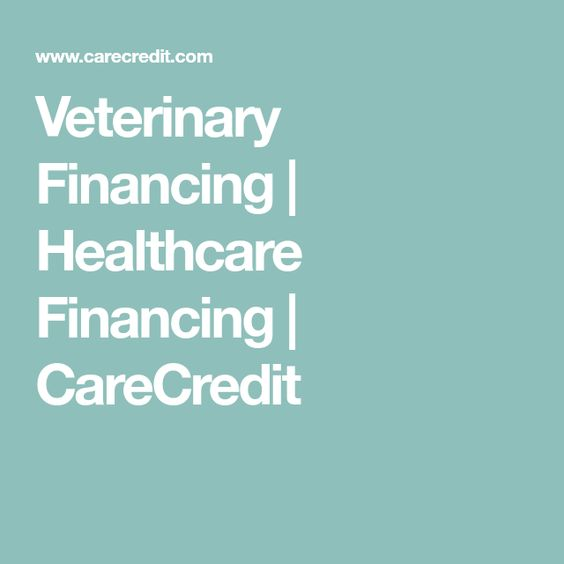 Veterinary Financing Healthcare Financing Carecredit With Images Health Care Teeth Cleaning Veterinary
