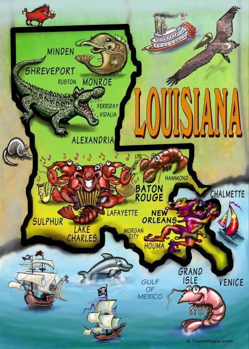 Louisiana Cartoon Map Greeting Card Lakes Sweet Home