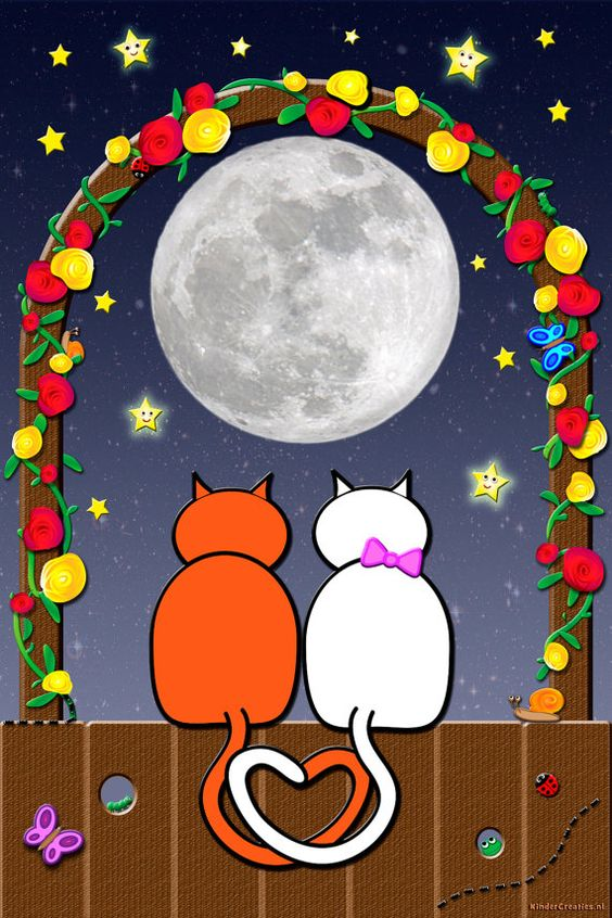 Kids poster: Cats and moon: