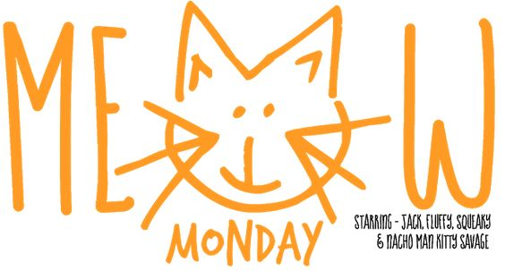 Meow Monday - pictures of cute cats to start off your week!