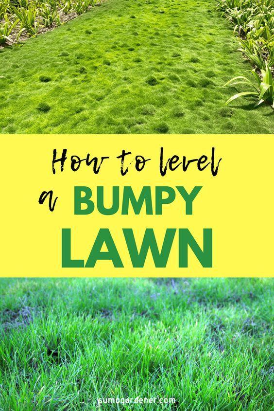 How To Level A Bumpy Lawn Lawn Repair Diy Lawn Lawn