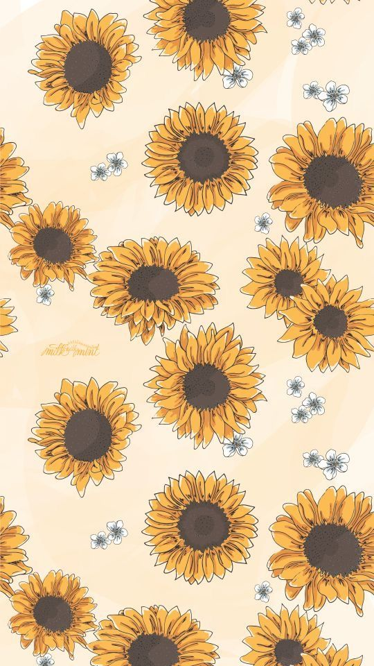 Sunflower Tumblr Background : sunflower, tumblr, background, Wallpaper, #wallpaperiphone, #tumblr, #cute, #simple, #babypink, #quotes, #pattern, #iphone…, Sunflower, Iphone, Wallpaper,, Background