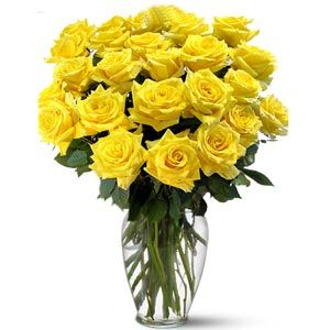 yellow roses: