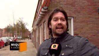Omroep Brabant: Ontroostbare Tilburger ziet hondje Stitch in armen sterven: 'Het bloed kwam uit zijn oren'