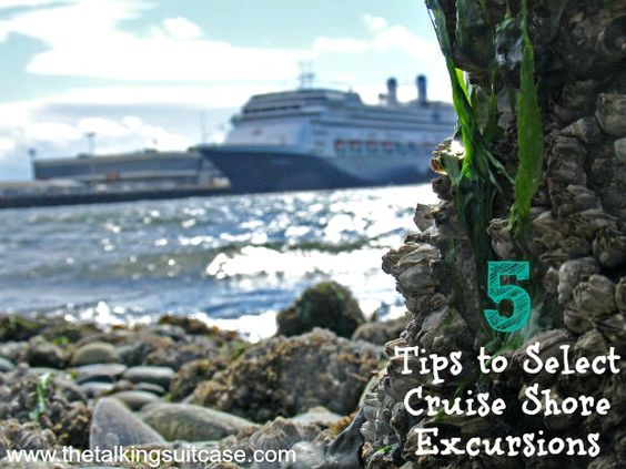 Caribbean Cruise Excursion Tips Great  Punchaoscom