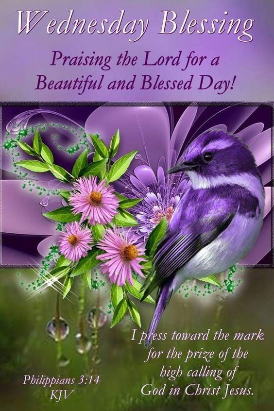 Praising The Lord For A Beautiful And Blessed Day Blessed Quotes