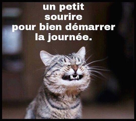 Humour - Il faut sourire pour être belle... - Le Blog de Moon