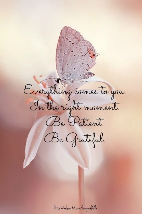 Everything comes to you. In the right moment. Be patient. Be grateful.