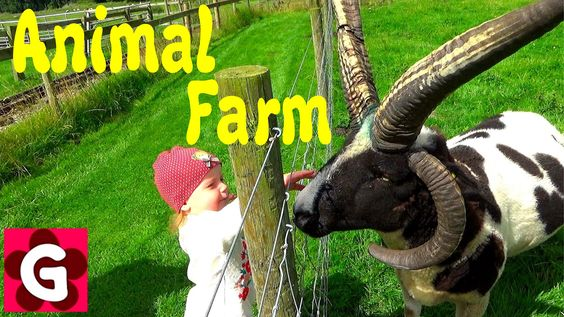 Had a great day at Windmills Animal Farm. Gabriella loved animals and of course outdoor playground as well :) Amazing way how to spend a fun day with your lo...