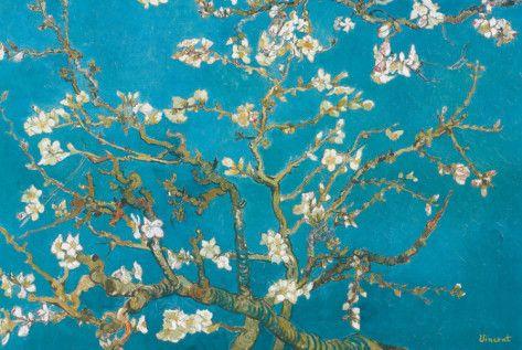 Almond Branches van Gogh