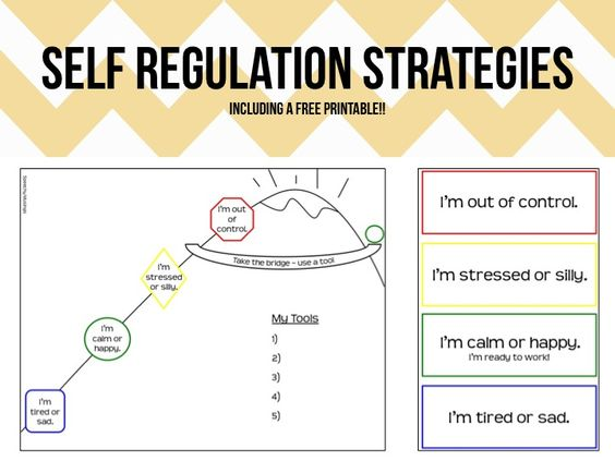 Regulation Strategies for SLPs | Occupational therapy | Pinterest ...