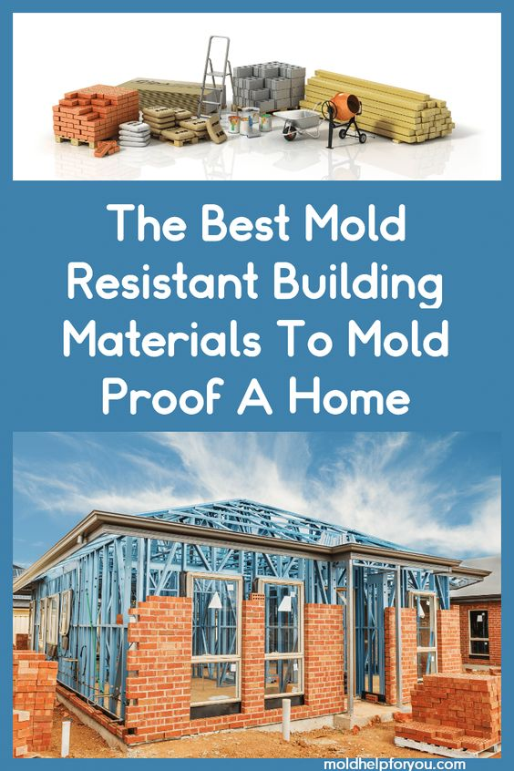 Mold resistant paint. Mold resistant drywall. Mold resistant insulation. Mold resistant grout. Mold resistant caulking. Mold resistant carpet??? Wait what? Are there really legitimate mold resistant building materials that work to make a home mold proof? Where do I buy these and are they affordable? Come learn more about the best mold resistant building materials in this comprehensive post. #moldresistantpaint #moldresistantcaulking #moldresistantdrywall #moldresistantinsulation #moldresistantb