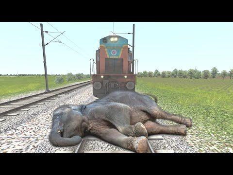 Lazy Elephant Sleeping On Track Train Sound كسول الفيل النوم على المسار صوت القطار Youtube In 2020 Elephant Animals Youtube