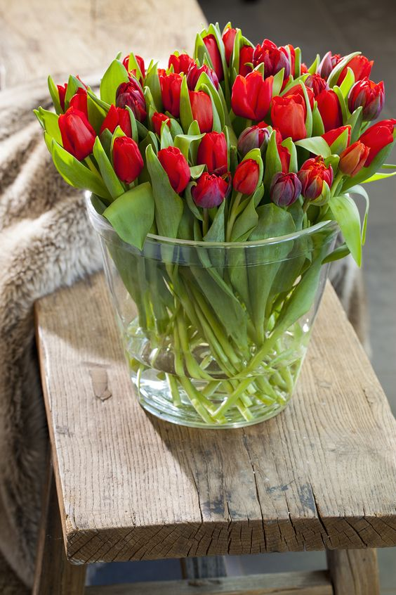i would love red  tulips instead of roses